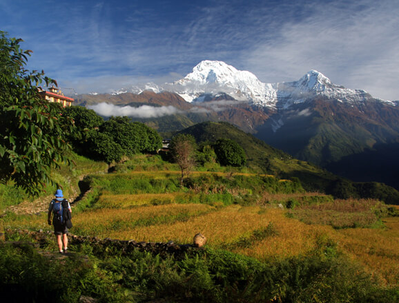 Annapurna Base Camp / Trek