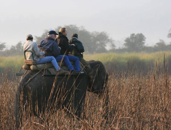 Kaziranga on elephant-back