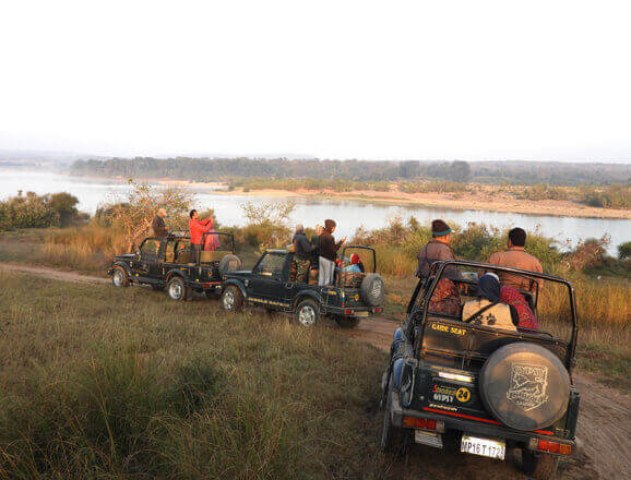 Panna Jeep Safari