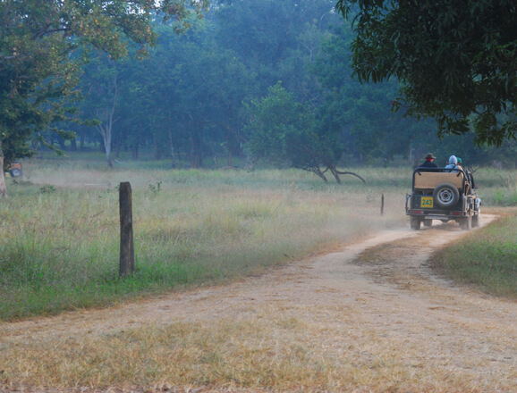 Kanha Jeep Safari